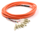 LC Jacketed 12Pk MM62.5 Orange Jacketed Fiber Pigtails, 3 Meter